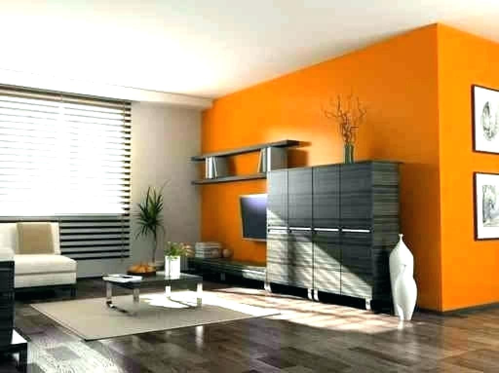 House Rental Painting and Painters In Suncity Hyderabad